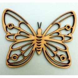 Πεταλούδα διάτρητη